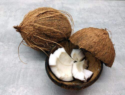 Verliefd op kokos